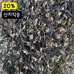 청정지역 맑은지리산 고사리 (건고사리) -100g